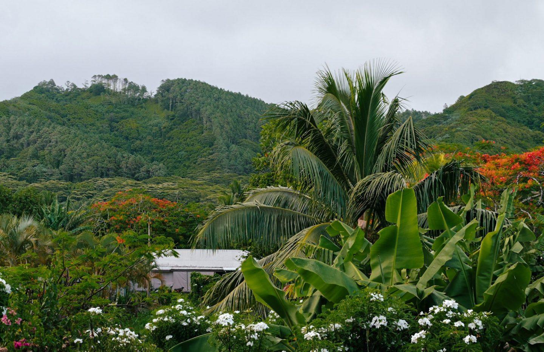 Rarotonga, Cookovi otoki